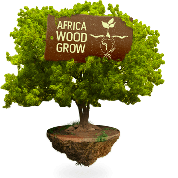 Home Stichting Africa Wood Grow